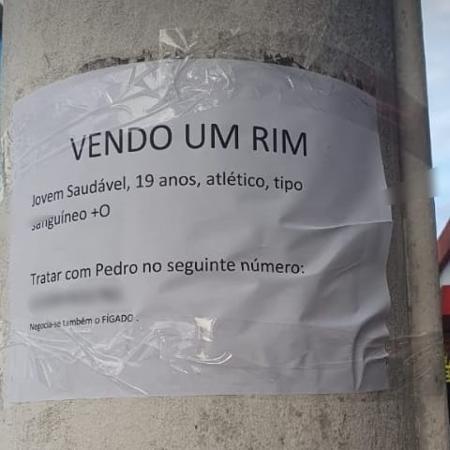 Jovem é vítima de pegadinha e tem órgão anunciado em Santos (SP) - Reprodução