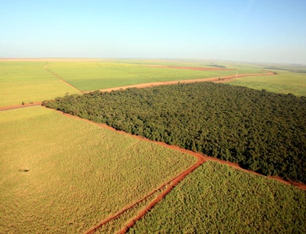Governo discute proposta para flexibilizar compra de terra por estrangeiros