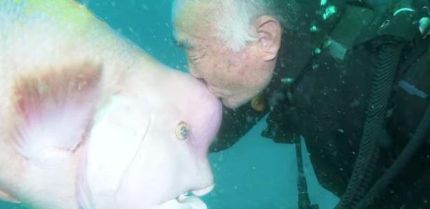 A amizade do mergulhador Hiroyuki Arakawa com o peixe Yoriko já dura mais de 30 anos