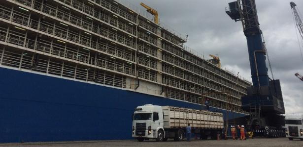 Resultado de imagem para Porto de Santos exportar gado