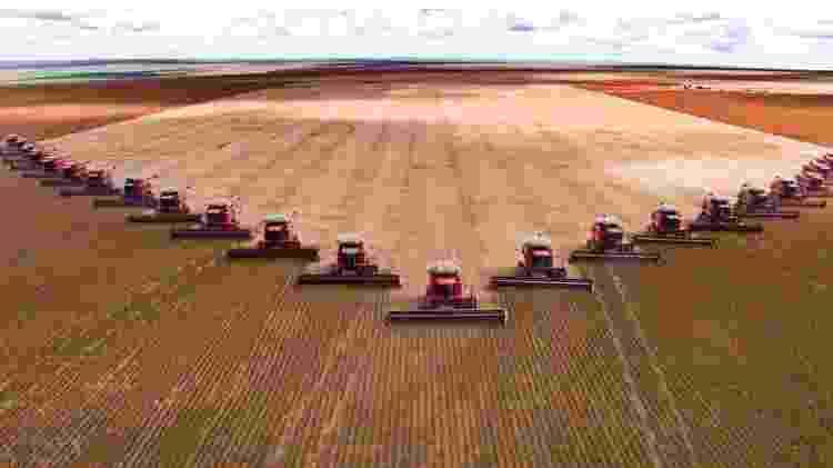 'Agropecuária exportadora não tem a perspectiva de alimentar pessoas, é um grande negócio global', diz Renato Maluf, pesquisador em segurança alimentar - Getty Images - Getty Images