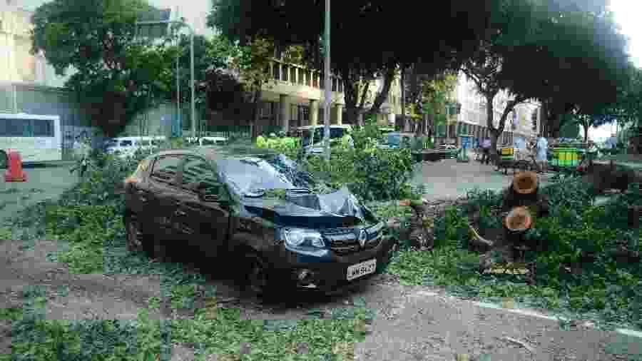 13.ago.2019 - Ventos fortes derrubam uma árvore danificando um veículo na Candelária, centro do Rio de Janeiro - Allan Carvalho/AM Press & Images/Estadão Conteúdo