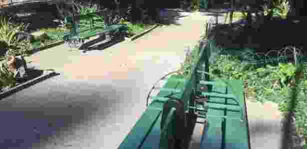 Parque Eduardo Guinle - Giovani Lettiere - Giovani Lettiere