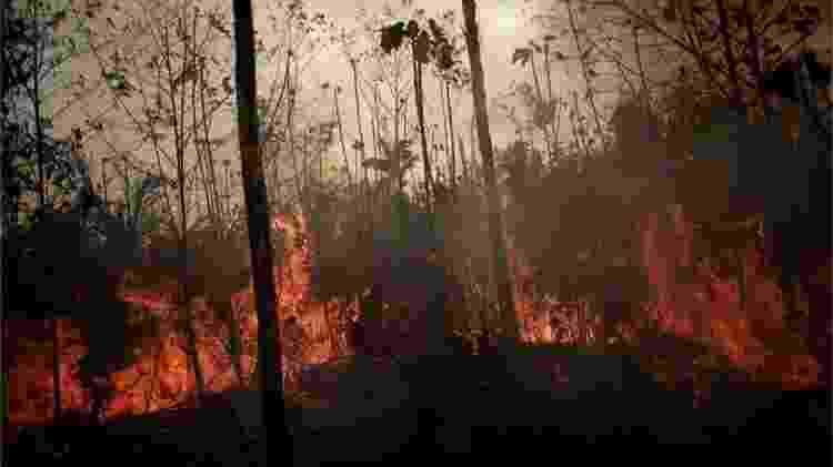 Grande maioria das queimadas no Cerrado e na Amazônia é causada pelo homem; tempo seco potencializa ação do fogo - Reuters - Reuters