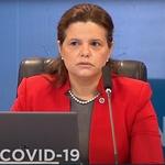 Meiruze Sousa Freitas, responsável pelo grupo com atuação em medicamentos, produtos biológicos e alimentos. Ela é a relatora dos pedidos da Fiocruz e do Butantan - Reprodução/YouTube