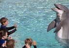 SeaWorld encerra shows com orcas após anos de polêmica nos Estados Unidos - Mike Blake/Reuters