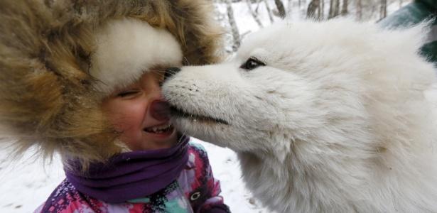 Cães conseguem reconhecer expressões de alegria e raiva em seres humanos