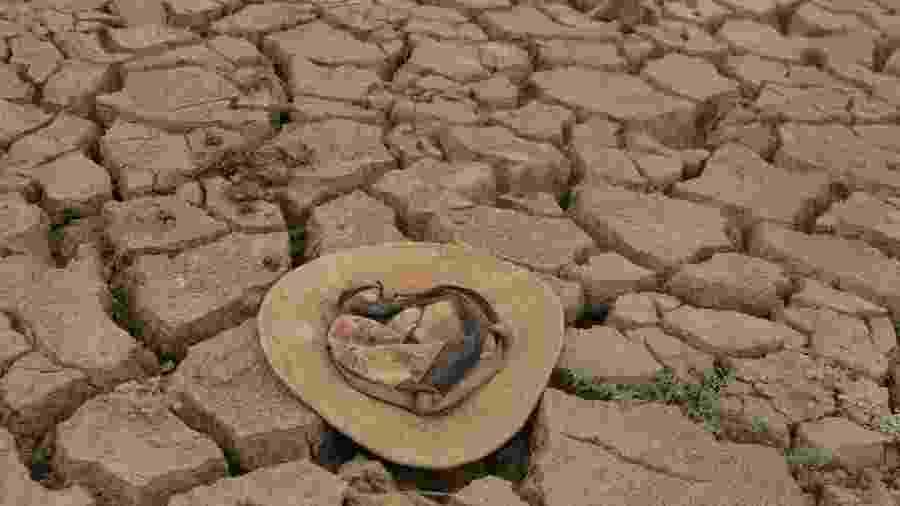 Monte Darwin, no Zimbábue, enfrenta forte seca este ano  - Shaun Jusa