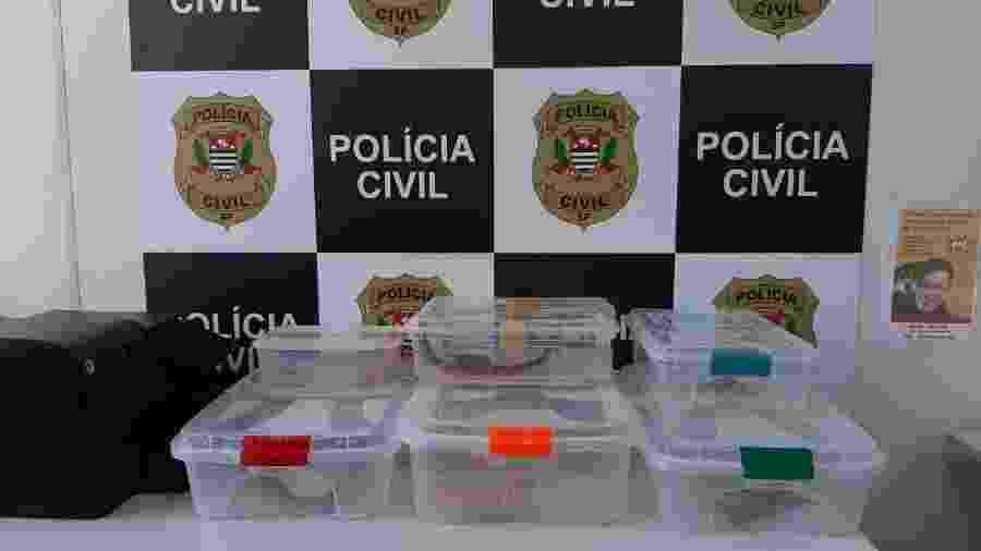 Polícia Civil encontrou oito animais silvestres na zona norte de São Paulo - Divulgação/Polícia Civil