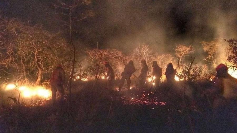 Bombeiros apagam incêndio na Caatinga no Ceará - SSPDS-CE