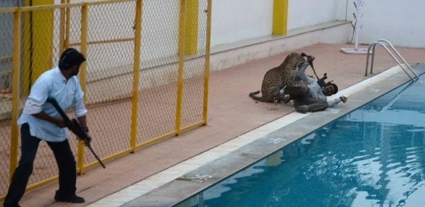 Imagens do ataque do leopardo a uma escola correram o mundo