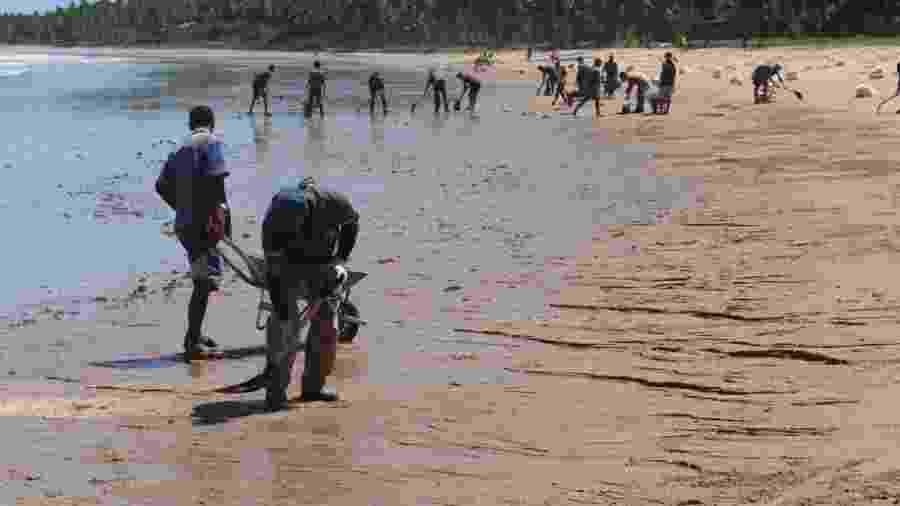 Em Japaratinga (AL), homem participa de operação de limpeza de óleo empurrando carro de mão com os pés descobertos e sem luvas - Felipe Brasil/Institito do Meio Ambiente de Alagoas