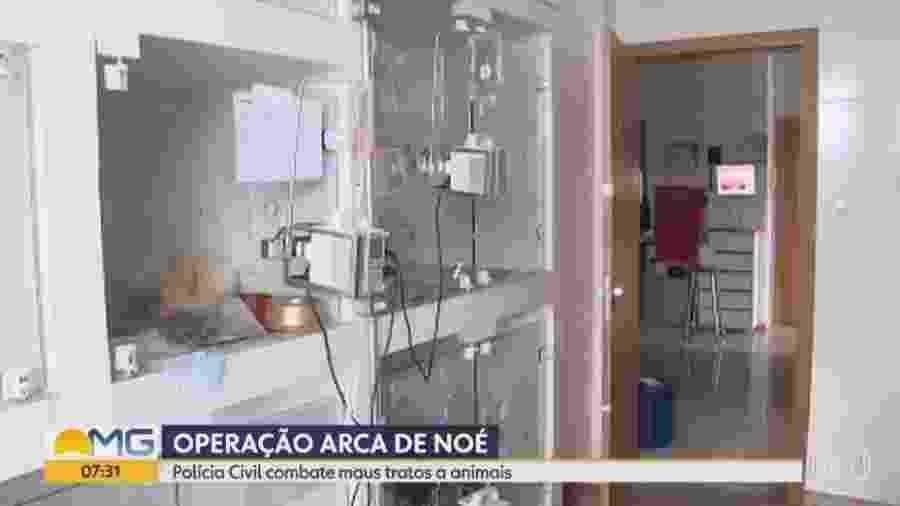 Clínica veterinária alvo de operação em Minas Gerais  - Reprodução/TV Globo