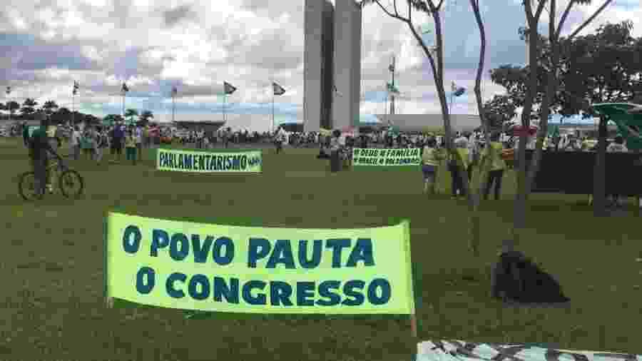 Manifestações pró-Bolsonaro em Brasília - Felipe Pereira/Divulgação