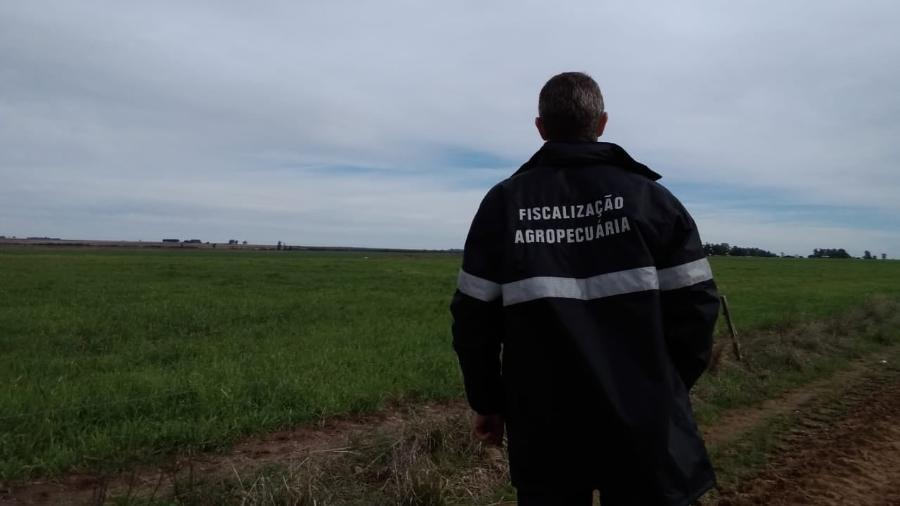 Os 11 técnicos não têm data para ser desmobilizados, mesmo com chuva e frio nos últimos dias - Secretaria Estadual da Agricultura, Pecuária e Desenvolvimento Rural