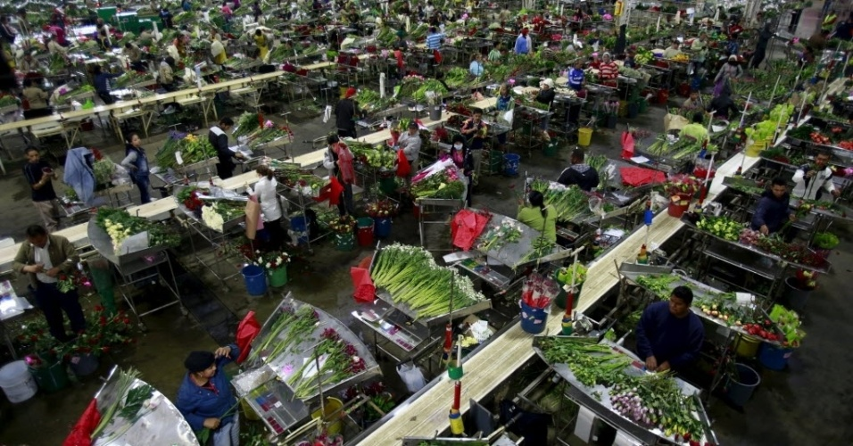 11.fev.2016 - Funcionários organizam buquês de flores para as vendas do Dia dos Namorados, comemorado no dia 14 de fevereiro, em uma fazenda perto de Bogotá, na Colômbia. A imagem foi tirada dia 28 de janeiro e divulgada nesta quinta-feira (11)