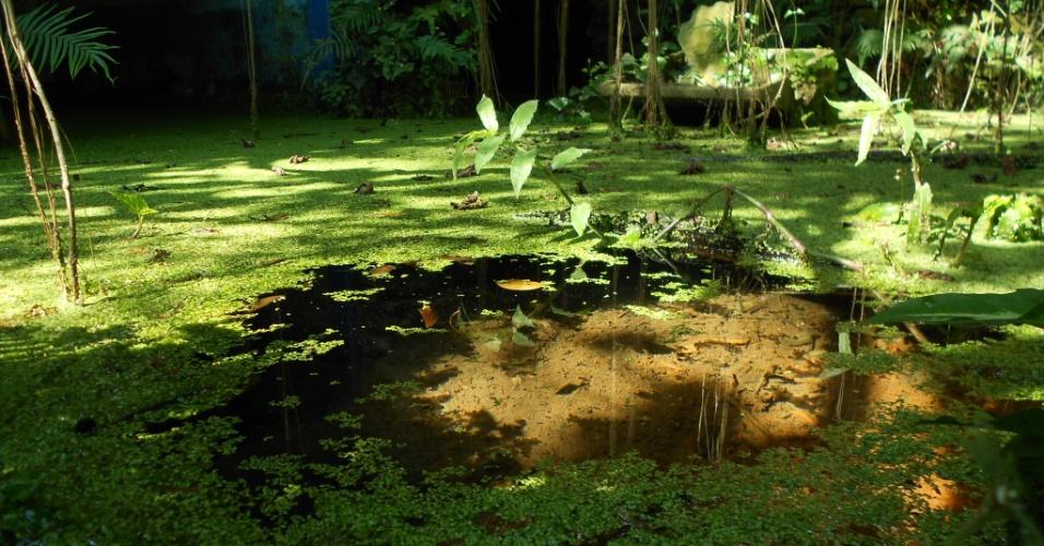 Um terreno situado na travessa da Fonte, no Butantã, na zona oeste, tem três nascentes que dão origem a um afluente do riacho Iquiririm. Uma delas fica em uma gruta em processo de tombamento pelo Patrimônio Histórico e já abasteceu moradores da região. A comunidade reivindica a criação do parque da Fonte no local