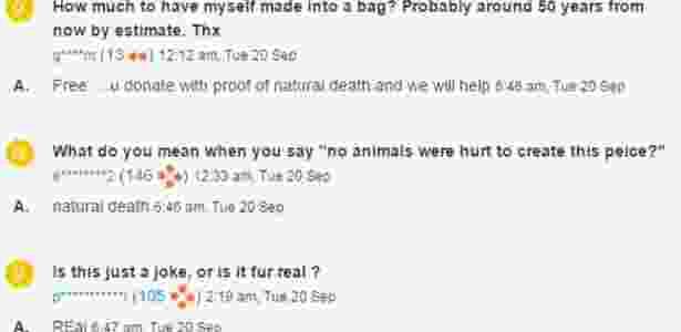 comentários bolsa gato bbc - TradeMe/ClaireThird - TradeMe/ClaireThird