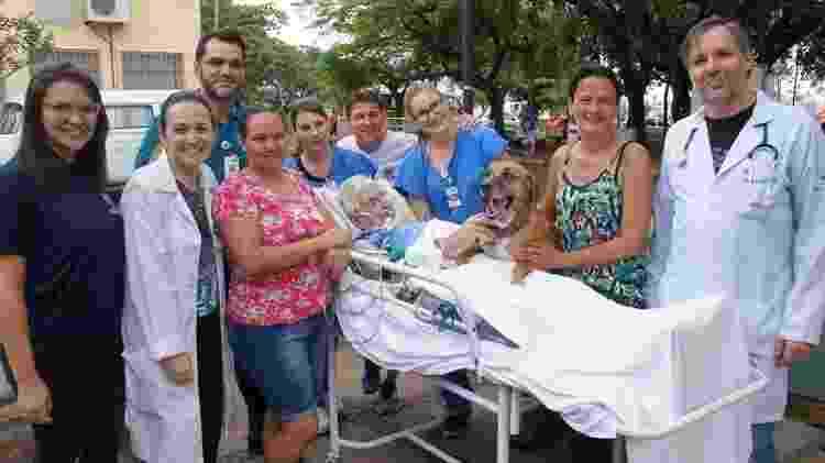Familiares e funcionários de hospital em Catanduva (SP) acompanham reencontro entre um idoso e seu cachorro - Divulgação/ Fundação Padre Albino - Divulgação/ Fundação Padre Albino