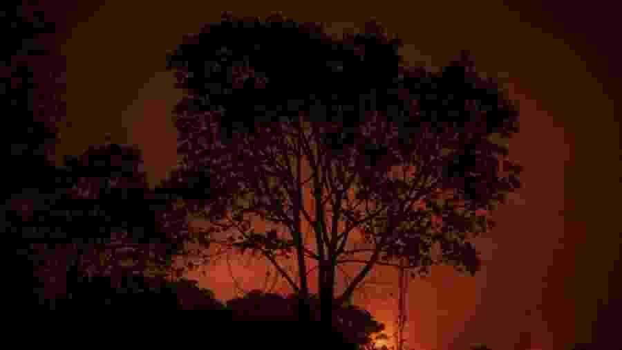 Fogo atinge vegetação próxima à Rodovia Transpantaneira, no Pantanal de Mato Grosso - Mauro Pimentel/AFP