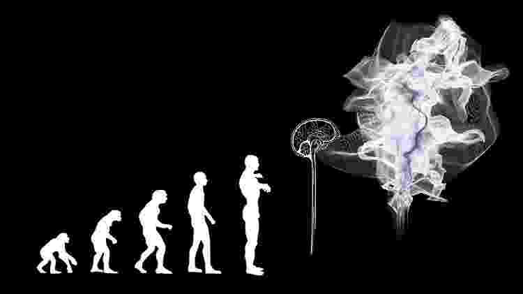 Ilustração - Evolução teoria evolucionismo darwinismo - Gerd Altmann/ Pixabay - Gerd Altmann/ Pixabay