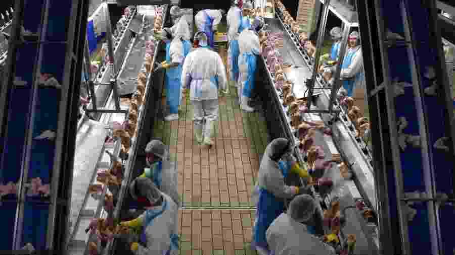 Asas de frango brasileiras testaram positivo para coronavírus na China - Por Jake Spring