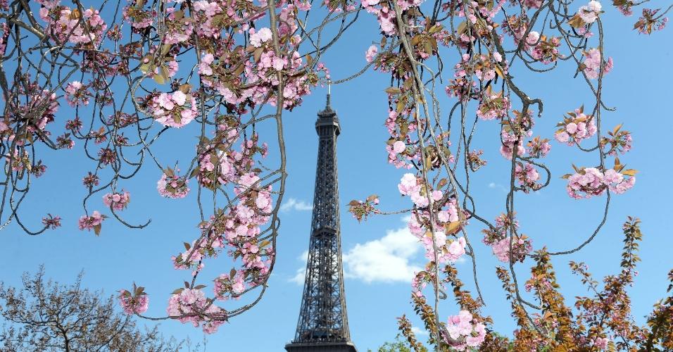 18.abr.2016 - Dia ensolarado marca a primavera em Paris, França