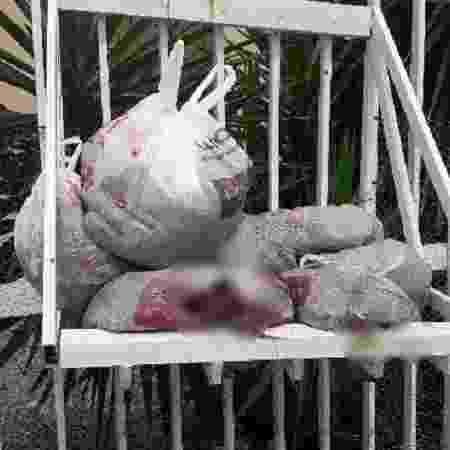 Saco de lixo com fezes colocada pelo morador que foi detido após tentar agredir coletores - Divulgação/PMSC