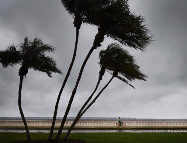 10.set.2017 - Furacão Irma atinge a cidade de Tampa, na Flórida, região que não era abalada por furacões desde 1921 - AFP PHOTO / JIM WATSON