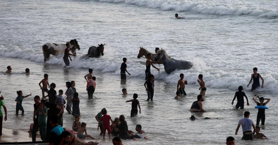 Cavalos são banhados em praia em Gaza, aumento os riscos aos frequentadores