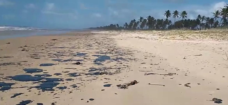 Manchas de óleo em praia da Bahia - João Arthur - 4.out.19/Projeto Tamar
