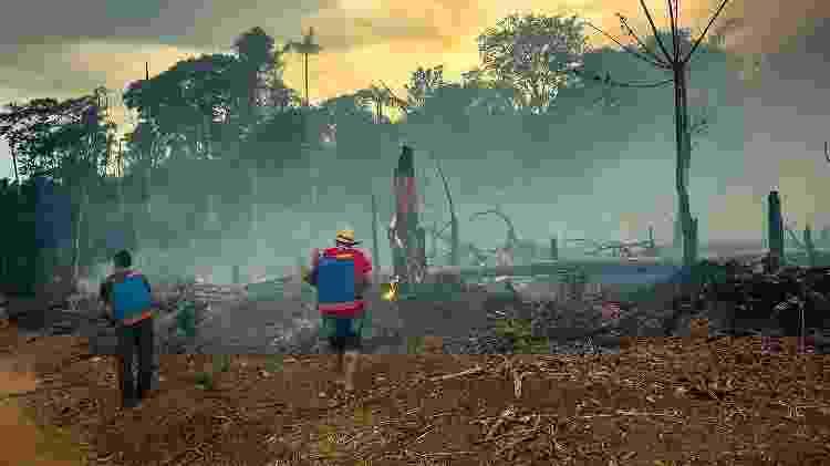 A Floresta Nacional do Jamanxim, em Novo Progresso, foi uma das áreas atingidas pelo 'Dia do Fogo', quando o número de queimadas triplicou na região - Fernando Martinho/Repórter Brasil - Fernando Martinho/Repórter Brasil