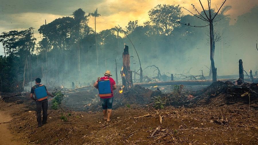 """A Floresta Nacional do Jamanxim, em Novo Progresso, foi uma das áreas atingidas pelo """"Dia do Fogo"""", quando o número de queimadas triplicou na região - Fernando Martinho/Repórter Brasil"""