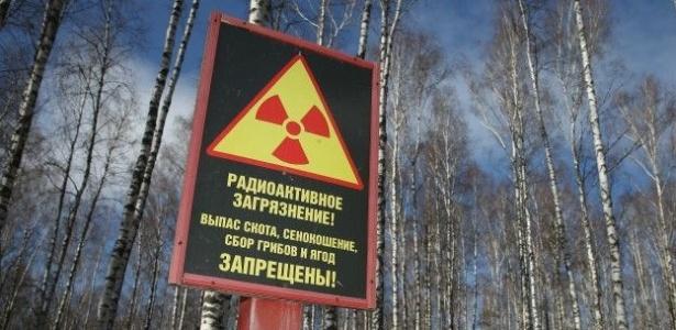 Sinais alertam para contaminação da zona onde ocorreu acidente de Tchernóbil