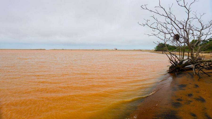 Impacto da lama foi sentido ao longo de todo o rio Doce por conta dos rejeitos da barragem rompida em Bento Rodrigues (MG) - Gabriel Lordello/Mosaico Imagem