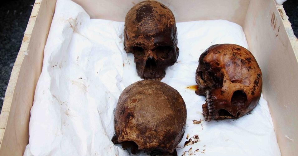 19.jul.2018 - Esqueletos de três pessoas foram encontrados dentro do sarcófago achado em Alexandria. Acredita-se que sejam três guerreiros ou oficiais militares