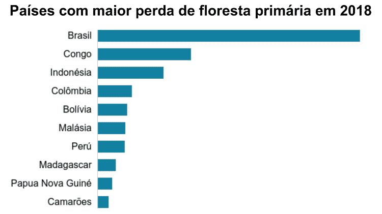 A área de floresta primária destruída no Brasil em 2018 - 1,3 milhão de hectares - foi menor que em 2017. Mas ainda assim está acima da média histórica do país. - BBC - BBC