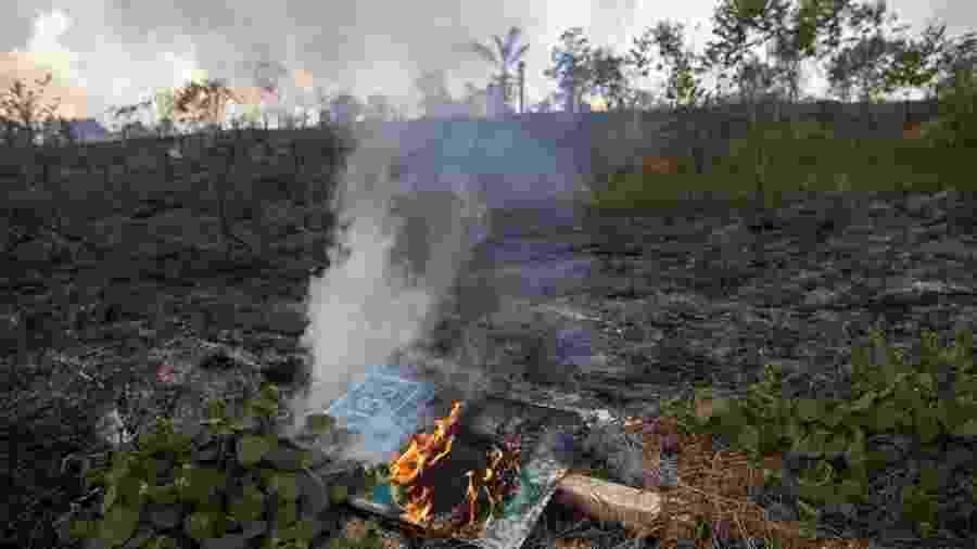 A destruição da floresta no sudoeste do Pará segue o eixo da BR-163, por onde passam os caminhões carregados com a soja do Mato Grosso até o porto fluvial em Itaituba - Joao Laet / The Guardian