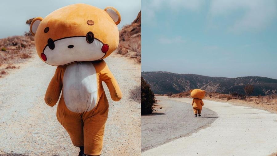 Jesse Lasios, de 33 anos, se vestiu de urso de pelúcia para caminhar mais de 643 quilômetros  - Reprodução/Instagram/@iambearsun
