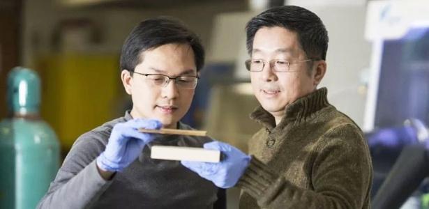 Liangbing Hu (à esq.) mostra como a supermadeira é mais densa e comprimida em relação à madeira natural, nas mãos de seu colega Teng Li