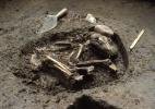 Estudo mostra como são inseparáveis os destinos dos humanos e de seus cães - Del Baston, courtesy of the Center for American Archeology via The New York Times