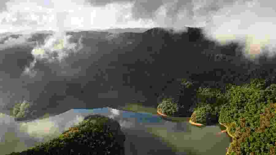Segundo o MPF, o novo entendimento do Ministério do Meio Ambiente sobre a preservação da Mata Atlânticarepresenta uma anistia aos desmatadores - Luciano Candisani