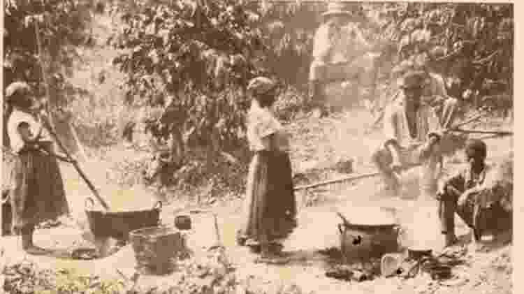 Escravos trabalham em uma plantação de café no Brasil - The New York Public Library - The New York Public Library