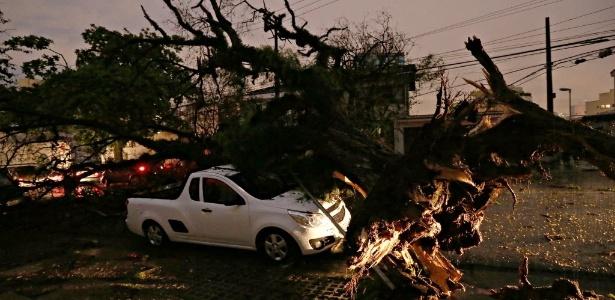 Chuva e fortes ventos derrubaram árvore na rua Harmonia, na Vila Madalena - Ernesto Rodrigues/Folhapress - 8.set.2015