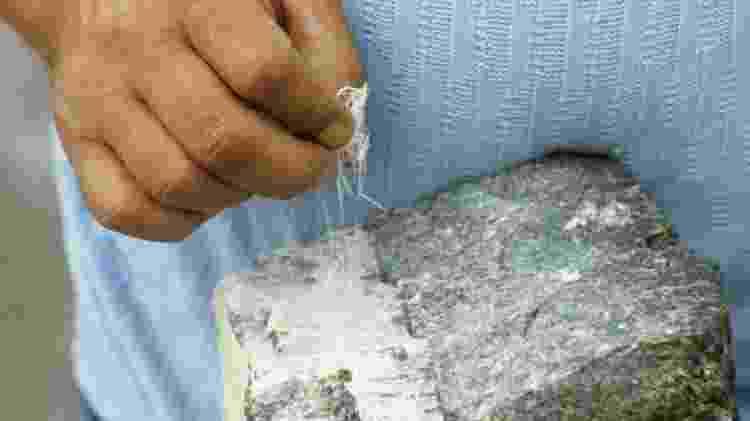 Um mineiro puxando fios de um pedaço de amianto branco - SCIENCE PHOTO LIBRARY
