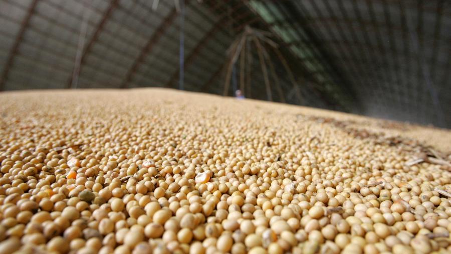 Armazém com soja recém-colhida em Sorriso (MT) - Paulo Whitaker