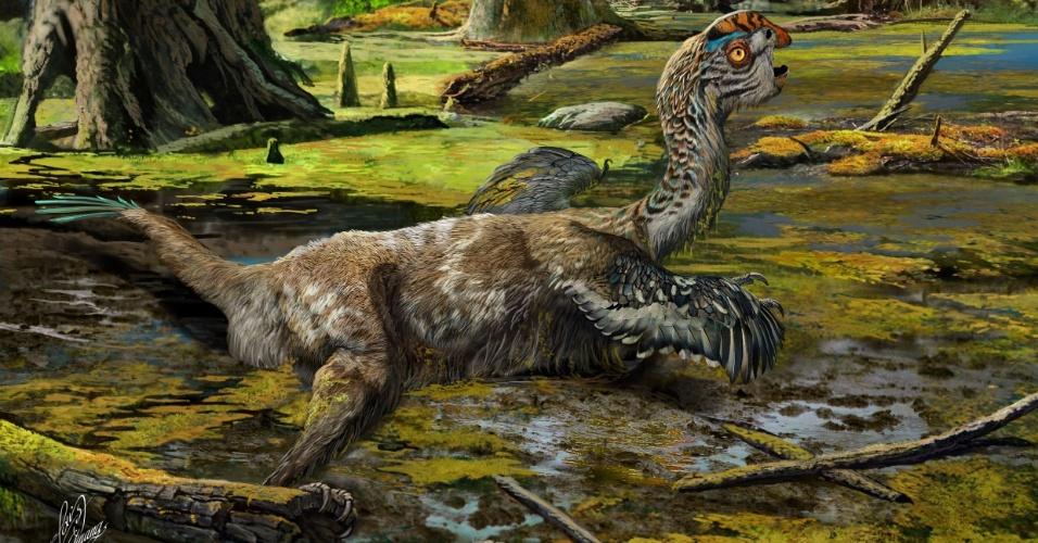 """9.nov.2016 - NOVO DINOSSAURO DESCOBERTO - Pesquisadores divulgaram a imagem de um novo dinossauro, o Tongtianlong limosus. O fóssil do animal foi encontrado na China por agricultores e trabalhadores de construção, que estranharam as ossadas e chamaram os cientistas. De acordo com a pesquisa, publicada na Nature, o oviraptorossauro (dinossauro que lembra um pássaro emplumado) estava em uma """"pose"""" estranha, com os membros esticados para o lado, o pescoço estendido e a cabeça levantada. Como os pesquisadores não viram o fóssil em seu local de origem, eles ainda não desvendaram o porquê da posição diferente. O animal estava na região de Ganzhou, conhecida por, nos últimos cinco anos, registrar a descoberta de seis grupos de oviraptorossauro de aproximadamente 72 milhões de anos atrás"""