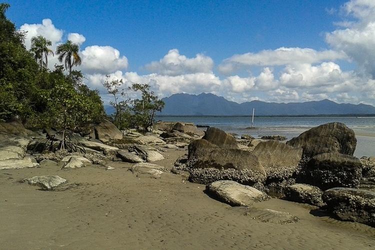Parque Estadual da Ilha do Cardoso (SP) - Criado em 1962, o Parque Estadual da Ilha Cardoso, localizado no extremo sul do litoral paulista, foi a primeira área insular em São Paulo protegida pela relevância ecossistêmica de sua zona costeira. Os 13.500 hectares do parque protegem paisagens de praias desertas cercadas pela vegetação característica da Mata Atlântica, além de manguezais, costões rochosos, restingas, lagunas, rios e montanhas. Em seu território já foram registradas cerca de mil espécies de plantas e espécies animais ameaçadas de extinção, como o papagaio-de-cara-roxa e o jacaré-do-papo-amarelo. Além disso, o parque também é considerado um dos maiores criadouros de espécies marinhas do Atlântico Sul. Ou seja, motivos não faltaram para que o Parque Estadual da Ilha Cardoso fosse reconhecido como Patrimônio Mundial