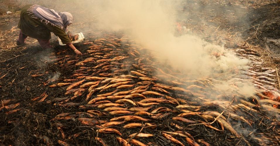 27.dez.2016 - Mulher coleta peixes defumados na grama que queima lentamente na cidade de Srinagar, Índia. Essa é uma comida tradicional na região da Caxemira