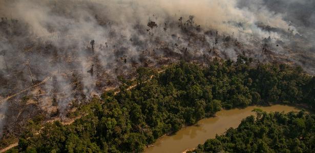 Meio ambiente   Meta climática do Brasil põe em risco investimentos no país, dizem empresas